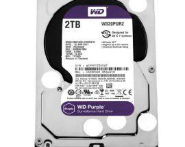 Жесткий диск Western Digital WD20PURZ