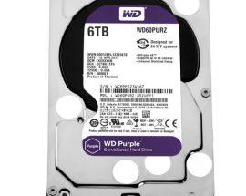 Жесткий диск Western Digital WD60PURZ